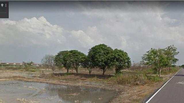ขายที่ดิน ด่วน รังสิต นครนายก คลอง 11 จำนวน 1 ไร่ 59 ตรว ใกล้ถนน