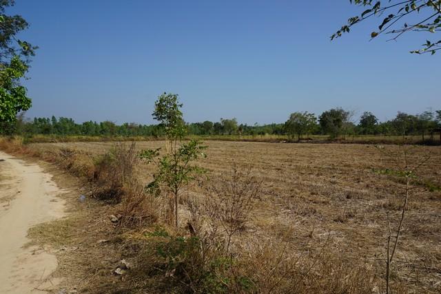 ขาย ที่ดิน โคกลาน กบินทร์บุรี เนื้อที่ 26 ไร่ 2 งาน 77 ตรว.