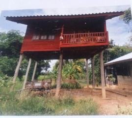 ขายที่ดิน 140 ตรว พร้อมบ้าน ราคาเพียง 800,000 ใกล้วัดเด่นโบสถ์ ต.บ้านกร่าง อ.เมือง พิษณุโลก