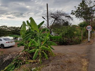 ขาย ที่ดิน เลี้ยงกุ้ง เลี้ยงปลา อ.บ้านสร้าง จ.ปราจีนบุรี  อยู่ติดถนน มีน้ำตลอดปี