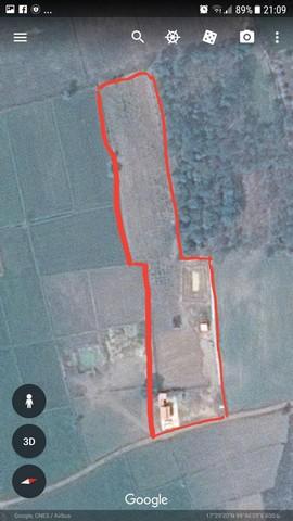 ขายสวนผสม พร้อมบ้าน ราคาเหมา 3.3 ล้าน พื้นที่ขนาด 6 ไร่ 16 ตร.วาคุณปลา 0818141341