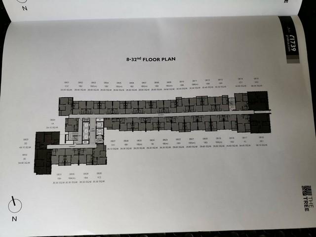 ขายดาวน์ By Owner คอนโดThe Tree Sukhumvit 71 ชั้น 22 โซนส่วนตัว พร้อมเฟอร์นิเจอร์