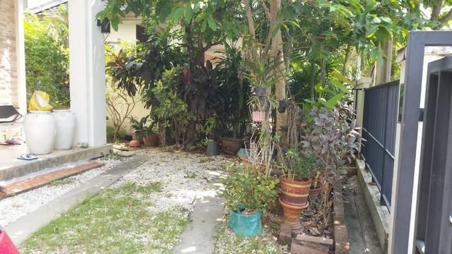 ขายบ้านเดี่ยว2ชั้นโครงการมัณฑนากรุงเทพกรีฑาซอย7ใกล้ Airport Link หัวหมาก บ้านหันทิศใต้