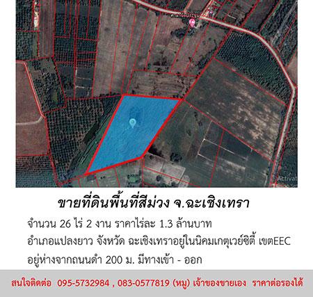 ขายที่ดิน พื้นที่สีม่วง จำนวน 26 ไร่ 2 งาน อำเภอแปลงยาว จังหวัดฉะเชิงเทรา ราคาต่อรองได้