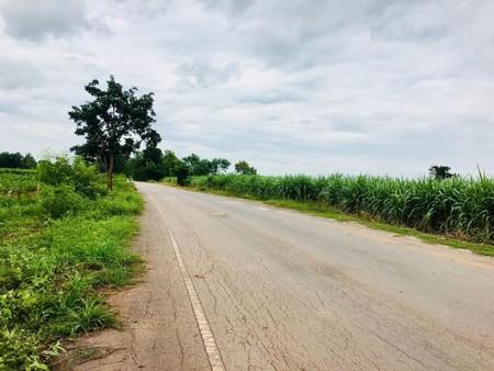 ขายที่ 10 ไร่ ติดถนนหลัก อ. บ้านแท่น จ. ชัยภูมิ  เส้นบ้านวังหิน