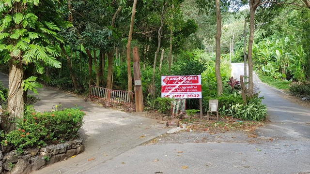 ขายรีสอร์ททรงไทย    6 ไร่  ภูเก็ต ห่างทะเล 1 กิโลเมตร , Resort for sale in Phuket (Soi Patak 12)