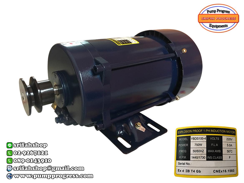 มอเตอร์ตู้จ่ายน้ำมัน 1 hp มอเตอร์ชนิดกันระเบิด มอเตอร์ไฟฟ้า มอเตอร์ปั๊ม มอเตอร์สำหรับอุปกรณ์งานน้ำมัน