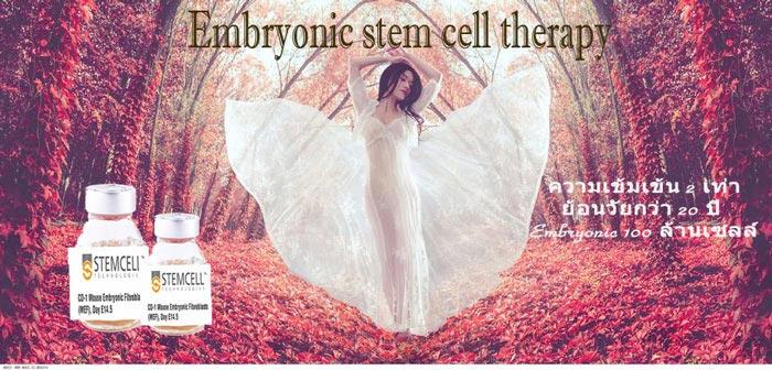 MF3 Stem Cell ช่วยฟื้นฟูบำรุง ปรับสมดุลผิวให้เรียบเนียนทั่วเรือนร่าง