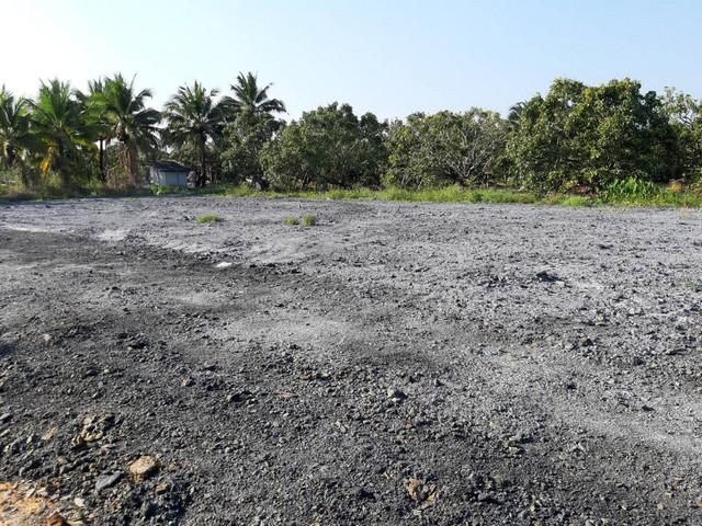 AUM007 ที่ดินเปล่า 150 ตรว  หารแก้ว หางดง ทำเลดี ถมแล้ว เหมาะกับการปลูกสร้างบ้าน ร่มรื่นน่าอยู่