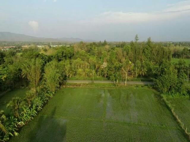 ขายที่ดินติดแม่น้ำปิง ที่สวยมาก  8 ไร่ อ.แม่ริม จ.เชียงใหม่ ใกล้เทศบาลตำบลหนองหาร