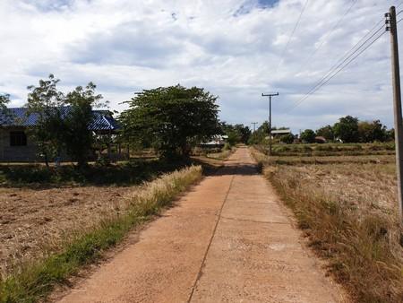 ขายด่วนที่ดิน ติดถนนคอนกรีต ที่สวยสี่เหลี่ยมผืนผ้า ขนาด 2 ไร่ ต.นาส่วง อุบลราชธานี