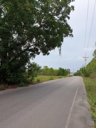 ขายที่ดินเปล่าติดถนน ทำเลดี บรรยากาศธรรมชาติ เนื้อที่ 2 ไร่ 68 ตรว. ต.เขาใหญ่ จ.เพชรบุรี